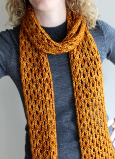 Lengthy Lace Scarf Modelled